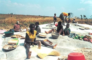[Angola] Grinding maize in Ussoque Huambo.