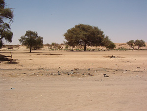 [Chad] The unmarked Chad Sudan border at Tine.