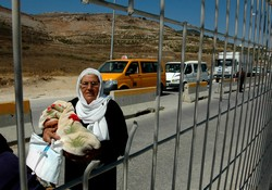 [Occupied Palestinian Territory] Nablus, West Bank. Prisoners in their own land, a woman carrying a bundled infant looks through a small hole in the bars at an Israeli checkpoint controlling entry and exit from Nablus. As she tries to make her way out of