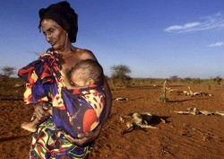 An 80-year-old woman cradles her malnourished grandson near Afder, southern Ethiopia. More than 14 million people in the region face chronic food insecurity, through poverty, conflicts and droughts. Men, women and children face a daily struggle to stay al