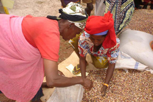 [Burundi] A beneficiary of the seed fair is buying some beans from a local vendor in the Kirundo province of Burundi. [Date picture taken: February 2006]