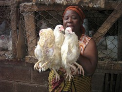 [Zambia] Jennifer Mwale says sales are down because of the bird flu panic. [Date picture taken: 06/23/2006]