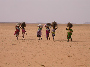 Women returning to an internally displaced persons camp in Darfur after collecting firewood, Sudan, 17 August 2006. Many women in Darfur are illiterate; there are few opportunities for girls' education in rural villages because they are responsible for