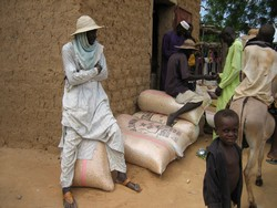[Niger] Traders at the Boubon market, southwest Niger. Plenty of food but few can afford. [Date picture taken: 08/23/2006]