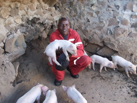Fusi Rampai, 17, one of seven siblings living in the Lesotho village of Turupu, who helps his mother, Mamanuel Rampai, 43, raise pigs after the family received a pig as a donation from an individual donor as part of an aid organisation's donor campaign.
