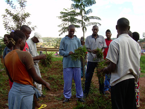 [Rwanda] Young people taking part in voluntary activities in Kigali. Twelve years after the genocide, young Rwandans are eager to rebuild their society. [Date picture taken: 11/25/2007]