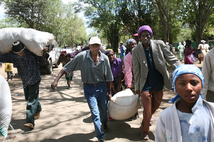 Internal Displaced persons arrive at the Nakuru show ground to seek shelter, Kenya, January 2008.  An estimated 250,000 people have fled their homes and are in need of food, shelter and essential medicines.