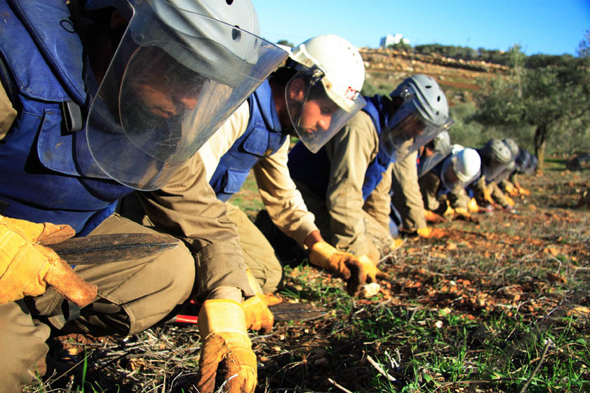 Deminers from MAG scour farmland in the village of Zawtar West in south Lebanon for Israeli-dropped cluster bombs. The UN says an average of 10 newly infected sites turn up every month.