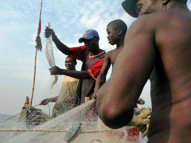 Fisherman Souriba Camara pulls a fish from his net in seas near Conakry.