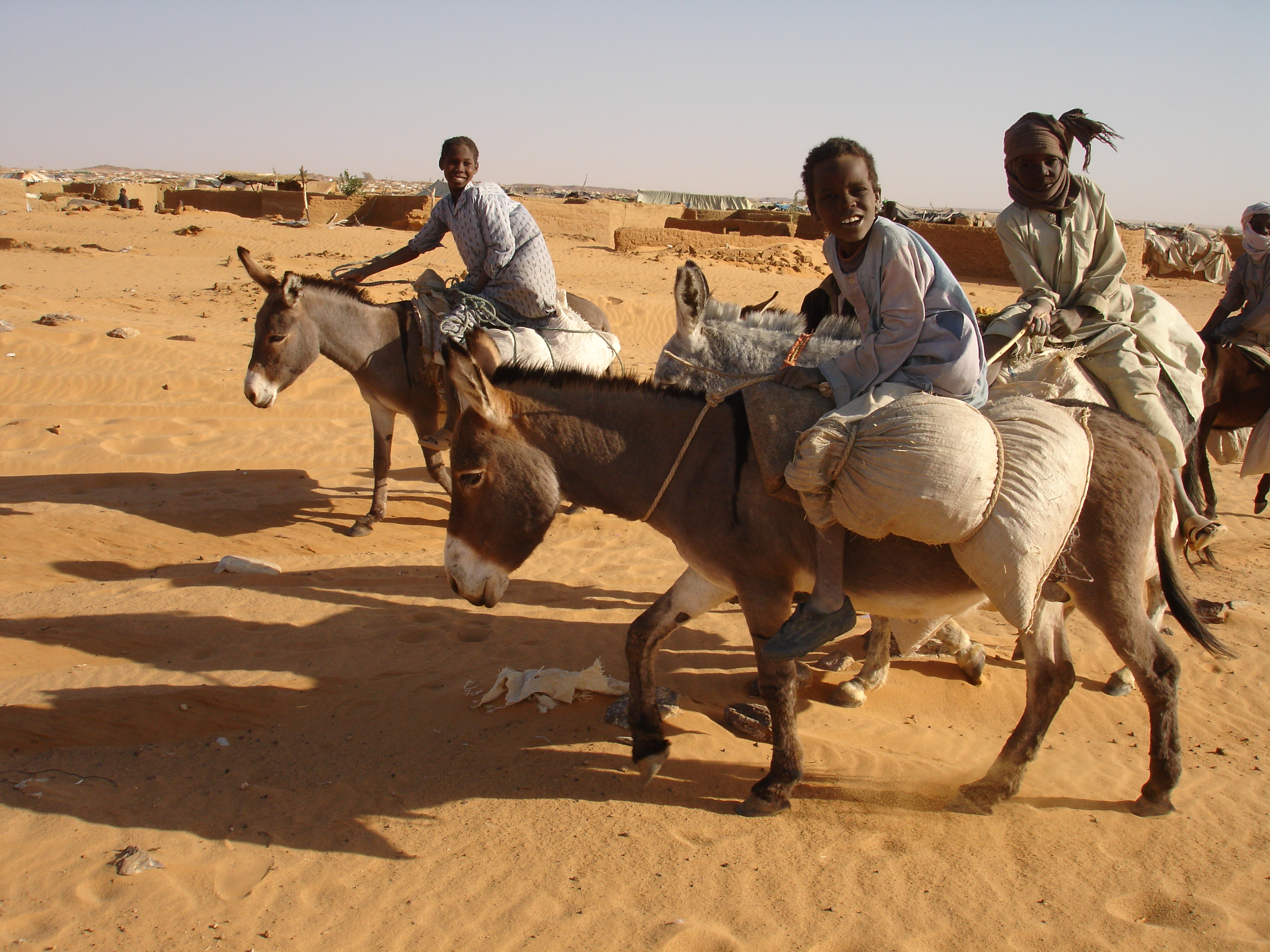 Refugee children from Darfur racing in the camp of Oure Cassoni. Donkeys are used to look for wood or water.