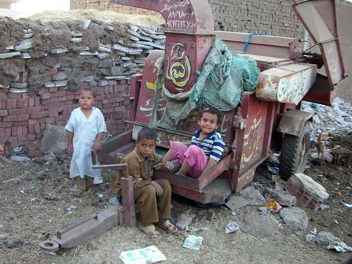 Twenty percent of global infant mortality is accounted for by diarrhoea, a problem in Egypt due to contaminated water.