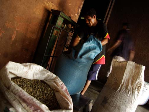 Coffee beans are bagged at Oriente Café. The plant was built by the Portuguese in 1966. Over 10,000 tonnes of coffee is produced in East Timor. It constitutes 80 percent of the country's total exports.