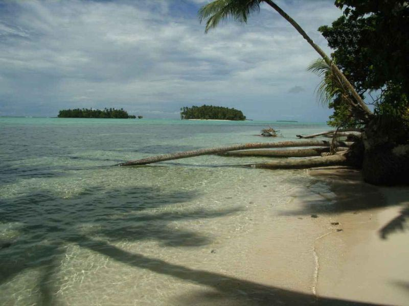 The view of Han island from Yolasa island, both part of the Carteret Islands of Papua New Guinea. Han used to be one island but has now been bisected by rising sea levels. Fallen coconut trees in the foreground were caused by the erosion of the coastline.