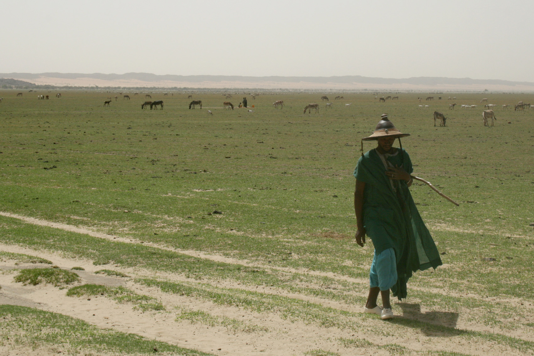 Lactib, a pastoralist in northern Mali who says his animals are small and weak because of poor rainfalls