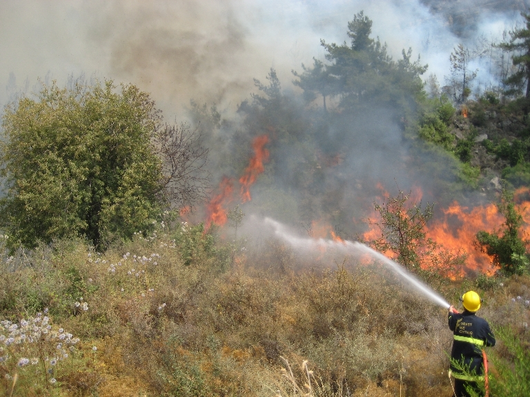 An AFDC volunteer fights fires in Ainab, Mount Lebanon in August 2008.