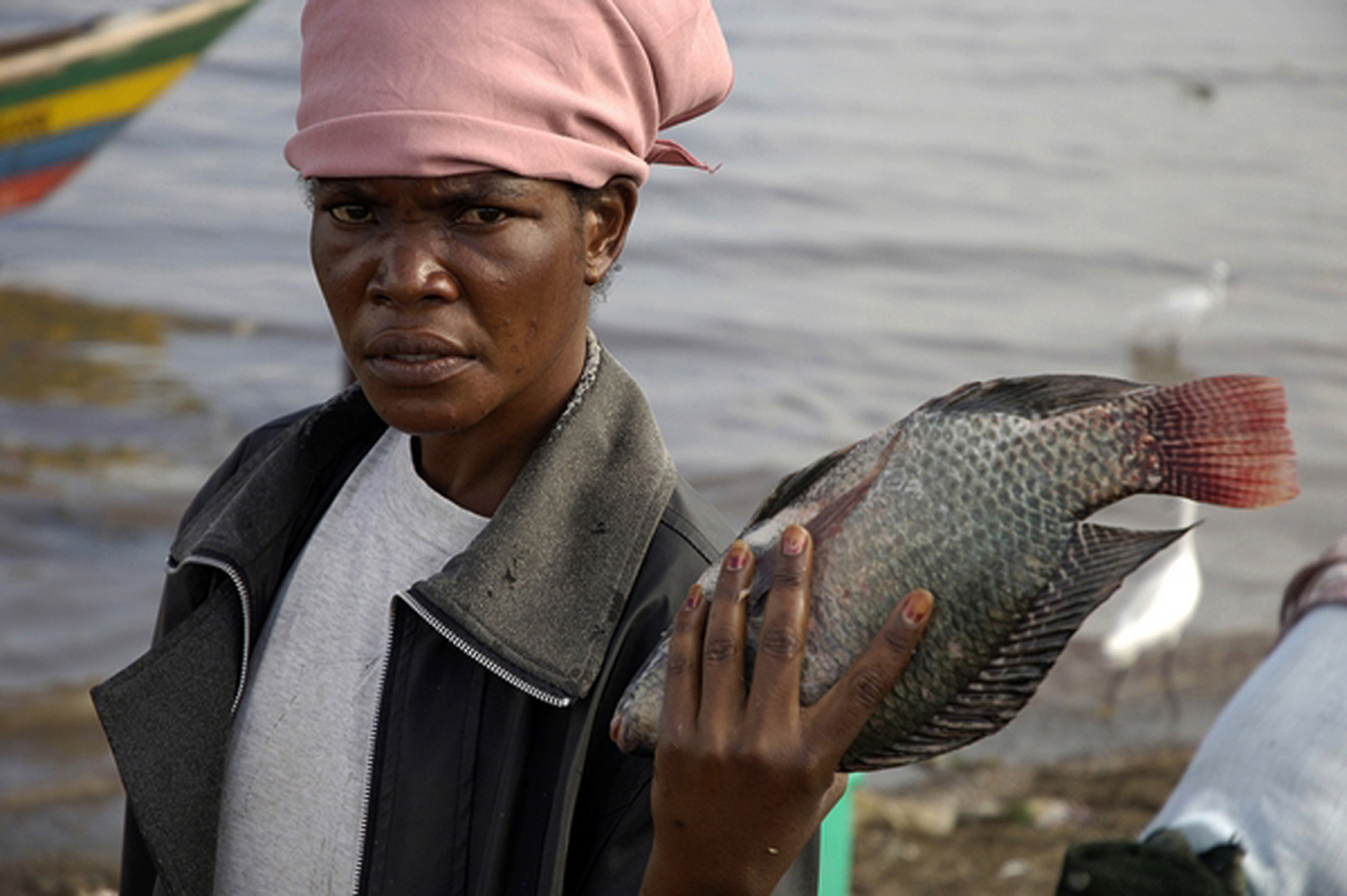 A woman displays fish in lake Victoria,Kenya 2008. Since fish is their common food in Kisumu.