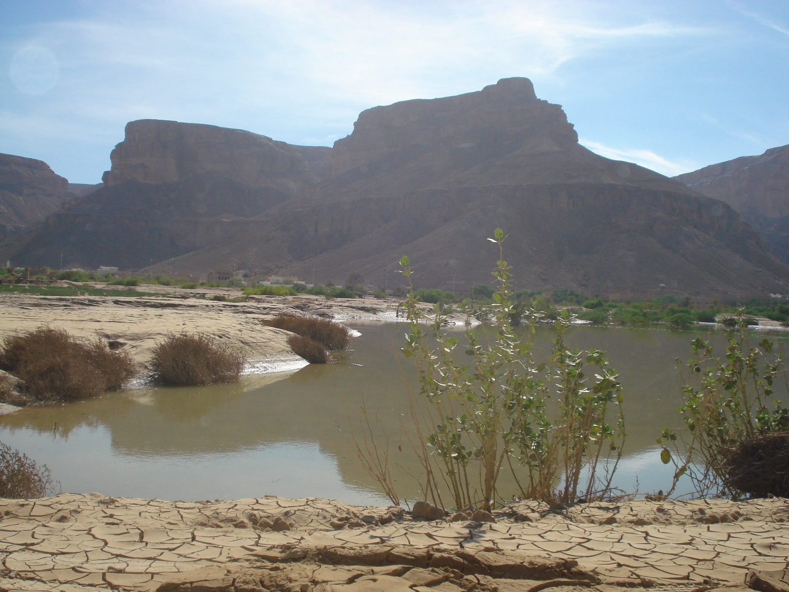 Floods have destroyed thousands of farms in Hadramaut