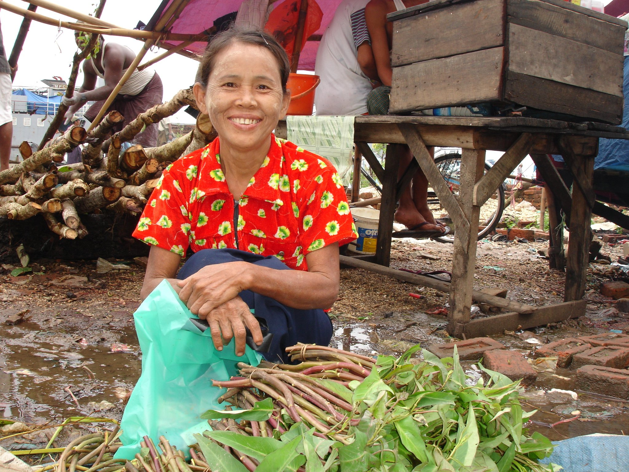 Livelihoods will prove a key component of the recovery effort. This woman has taken to travelling to Labutta to sell vegetables outside to make ends meet after Cyclone Nargis, a disaster that left close to 140,000 people dead or missing.