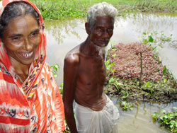 Villagers struggling with waterlogged fields in parts of southern Bangladesh have been growing food on floating islands of paddy straw, water hyacinths and other aquatic plants called bairas