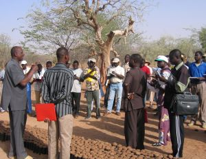 Farmers gather for a workshop on growing acacia trees (file photo)