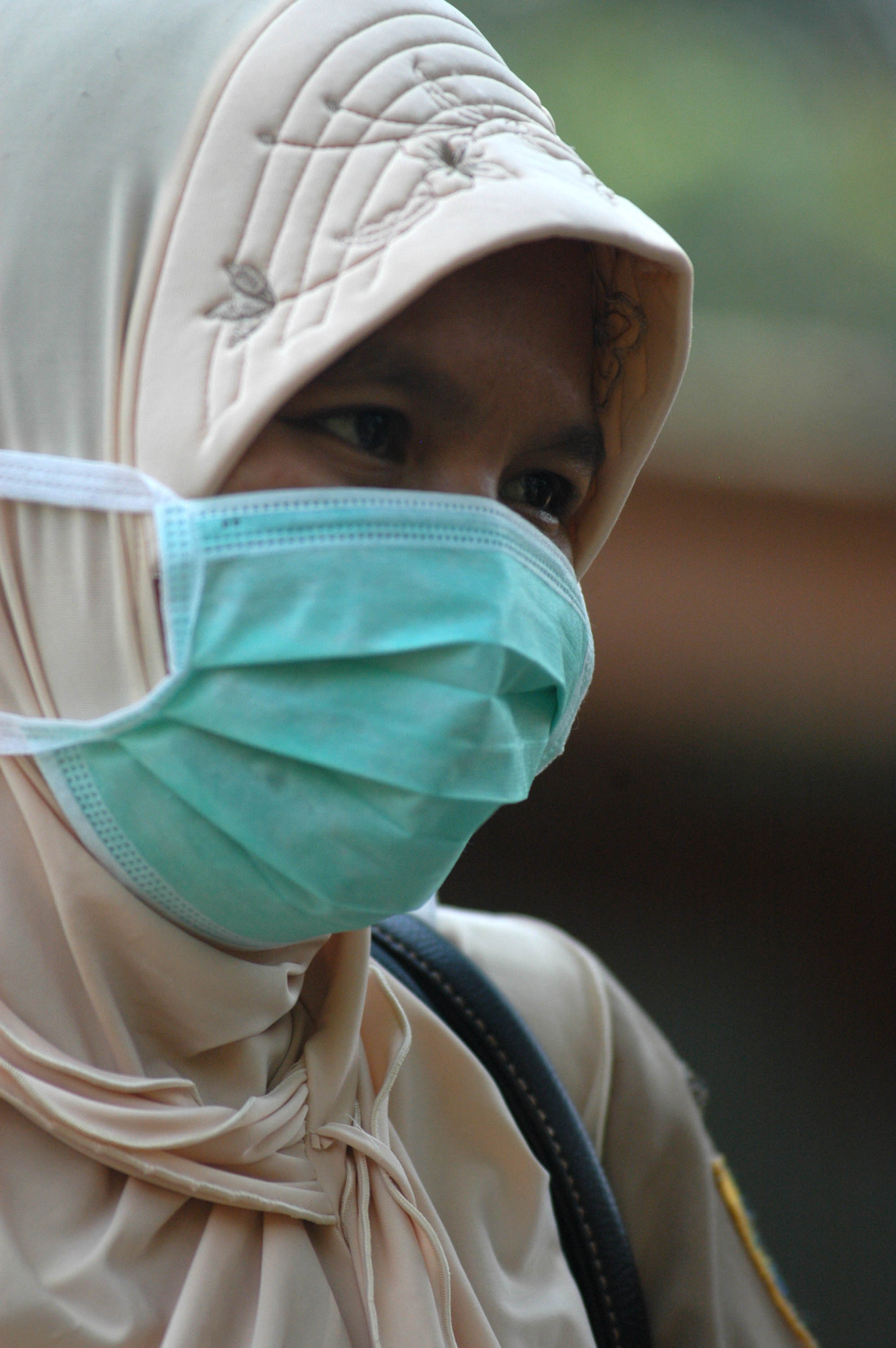 A woman wears a mask protect herself from a possible swine flu outbreak at a farm in Cilebut, Bogor Regency, West Java Province, Indonesia