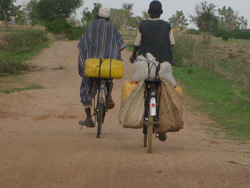 Villagers in Rigar-Rana, Kano State, bicycling with jerry-cans of water because they have no water source in their village