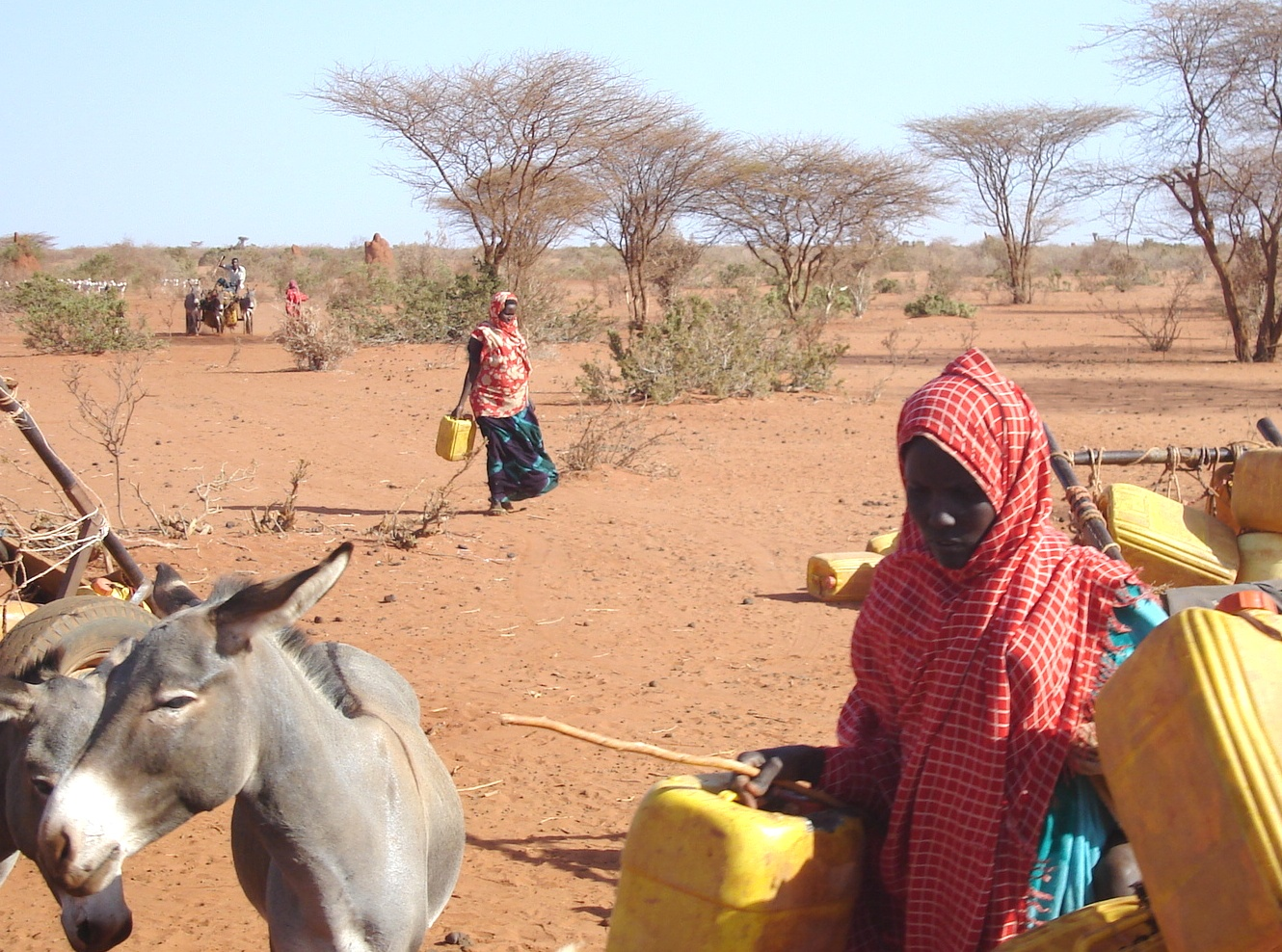 In the drought-ravaged Gedo region of Somalia, obtaining water can involve treks of 20km or more