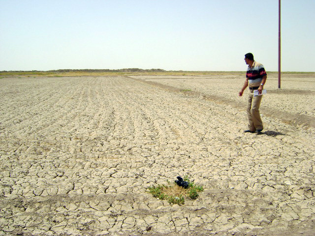 Drought in al-Awaileen Village in Muthanna Governorate. Because of a lack of rainfallf, Iraq had its worst cereal harvest in a decade