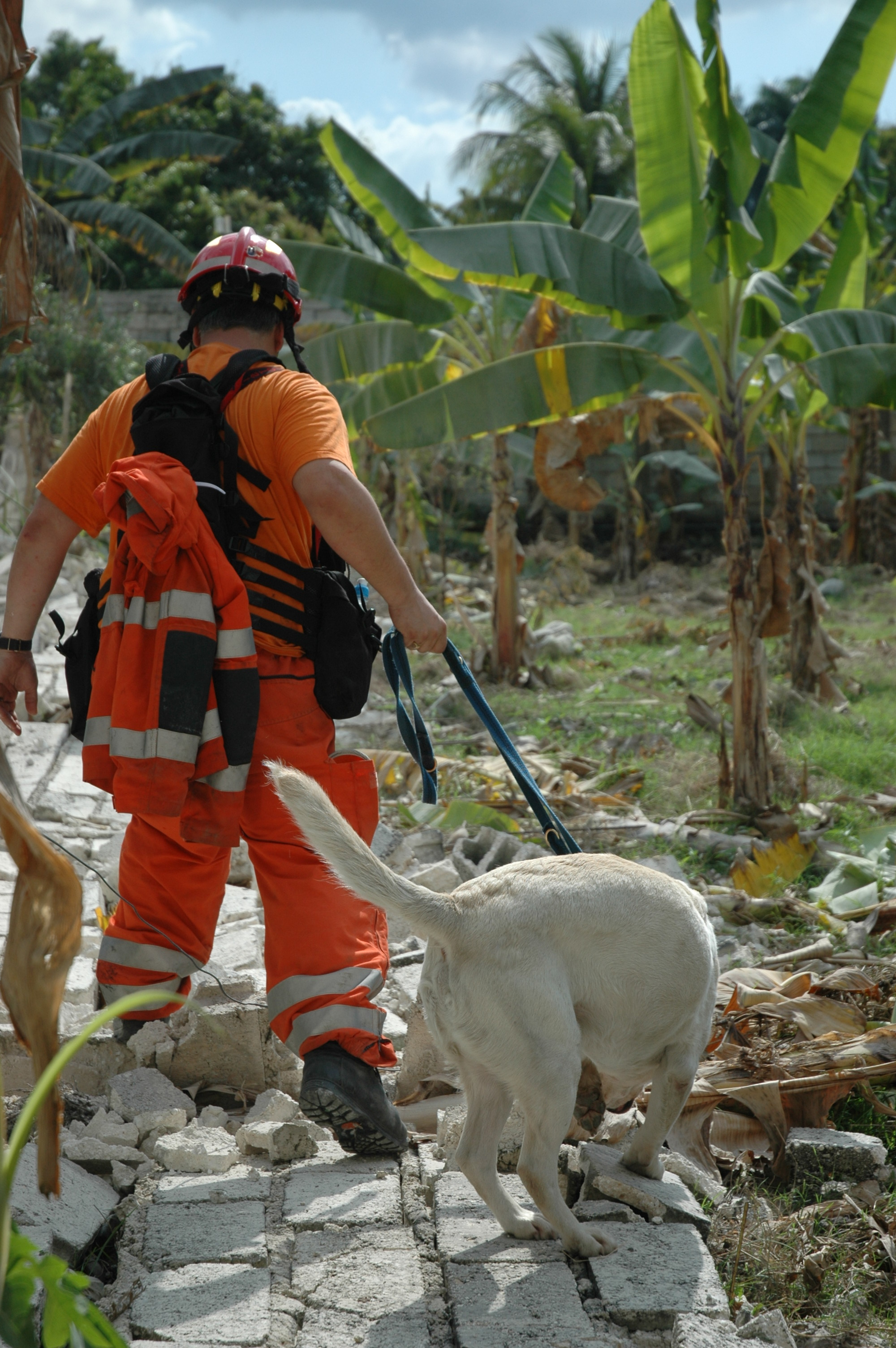 Rescue worker with sniffer dog, Leogane, Haiti, Jan 2010