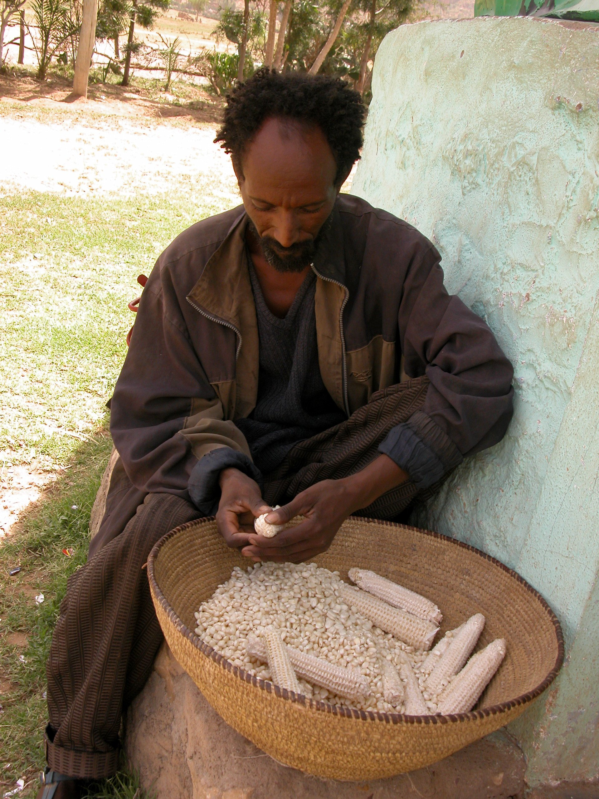 A farmer in Tigray, Ethiopia