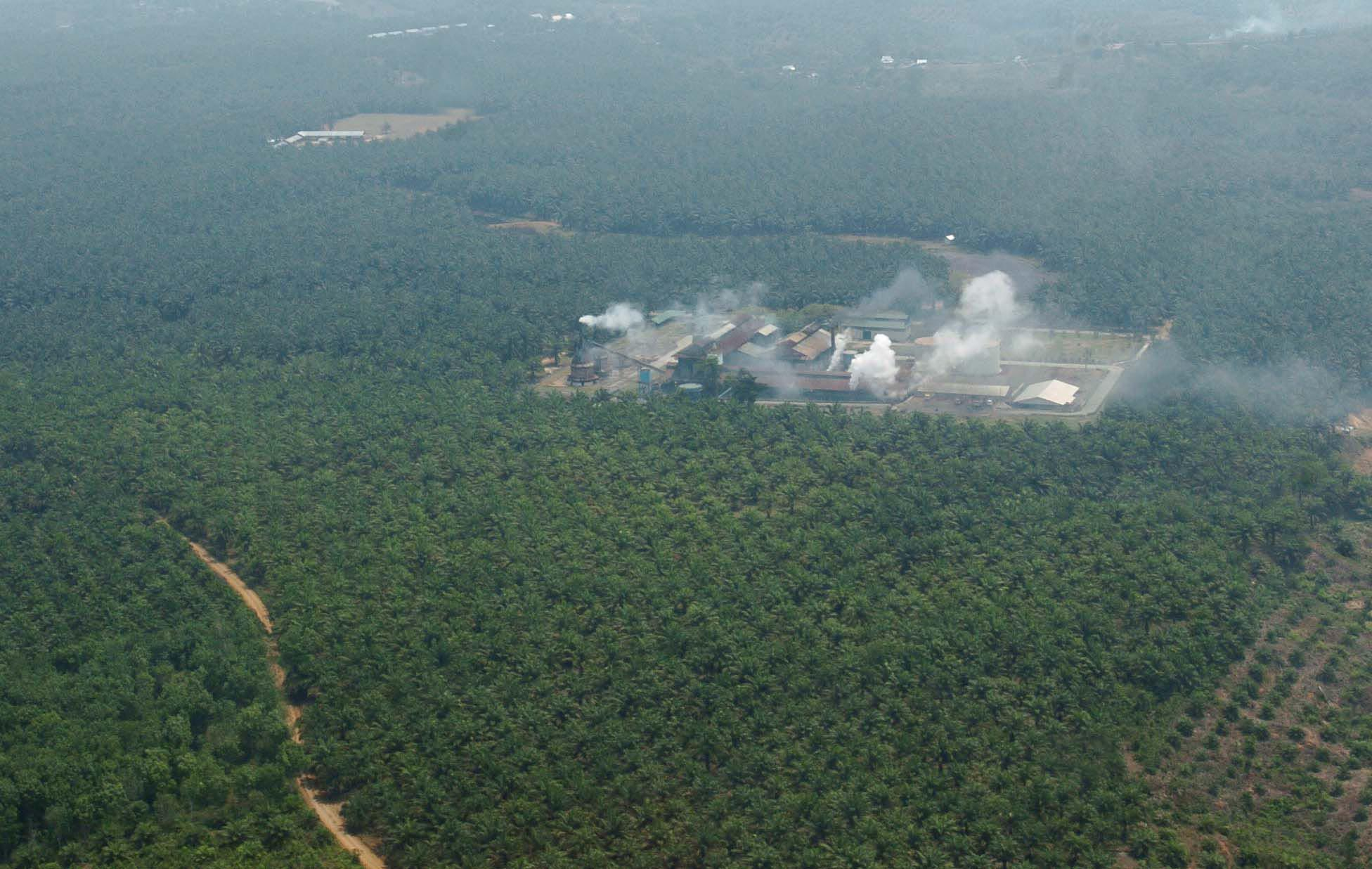 An aerial photograph of the Crude Palm Oil (CPO) factoryin Muko-Muko Regency, Bengkulu Province, Sumatra Island. Many communities throughout Indonesia are losing their land to companies seeking to profit from the booming palm oil industry