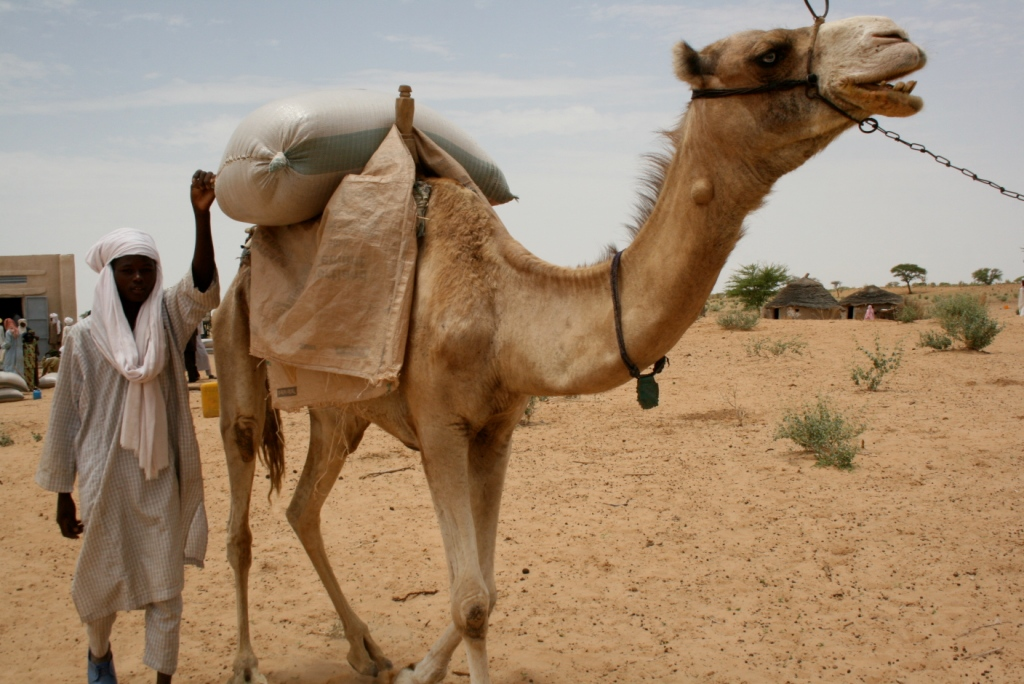 Nomadic people leaving with their food aid in Diffa region, Niger