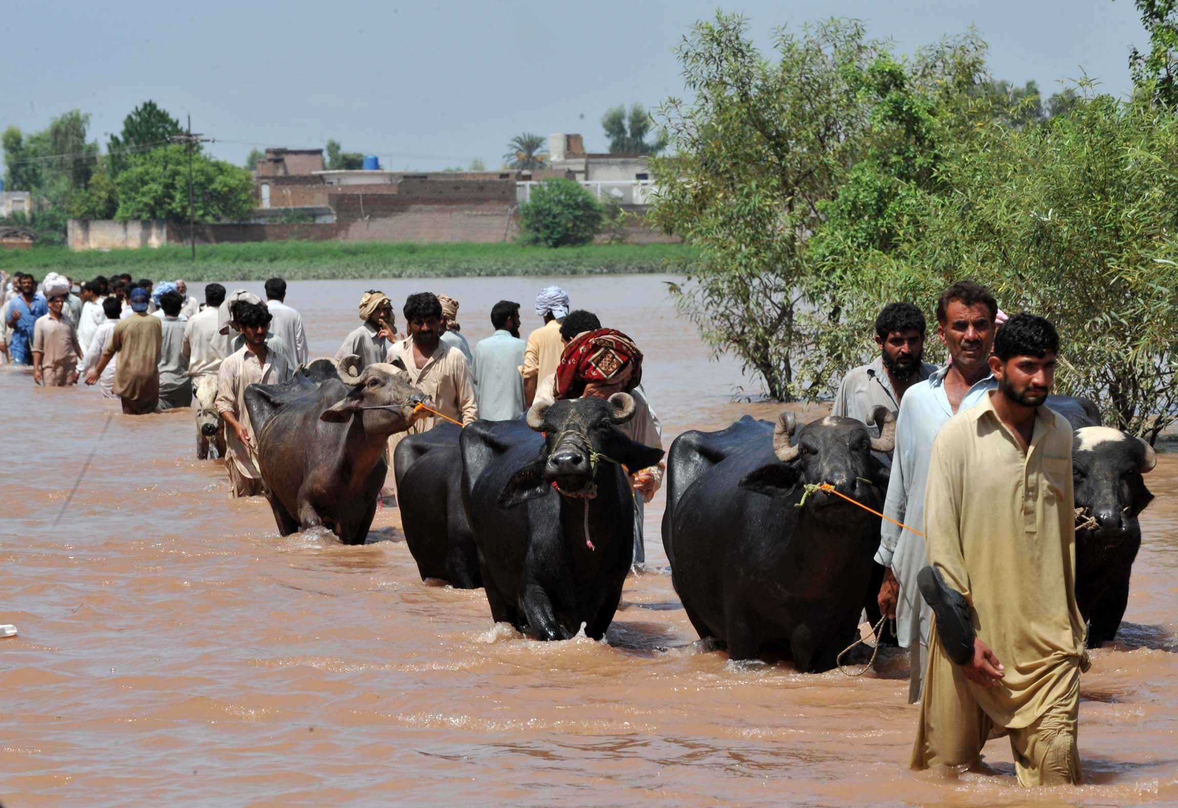 Displaced people fleeing Sindh have streamed into Balochistan