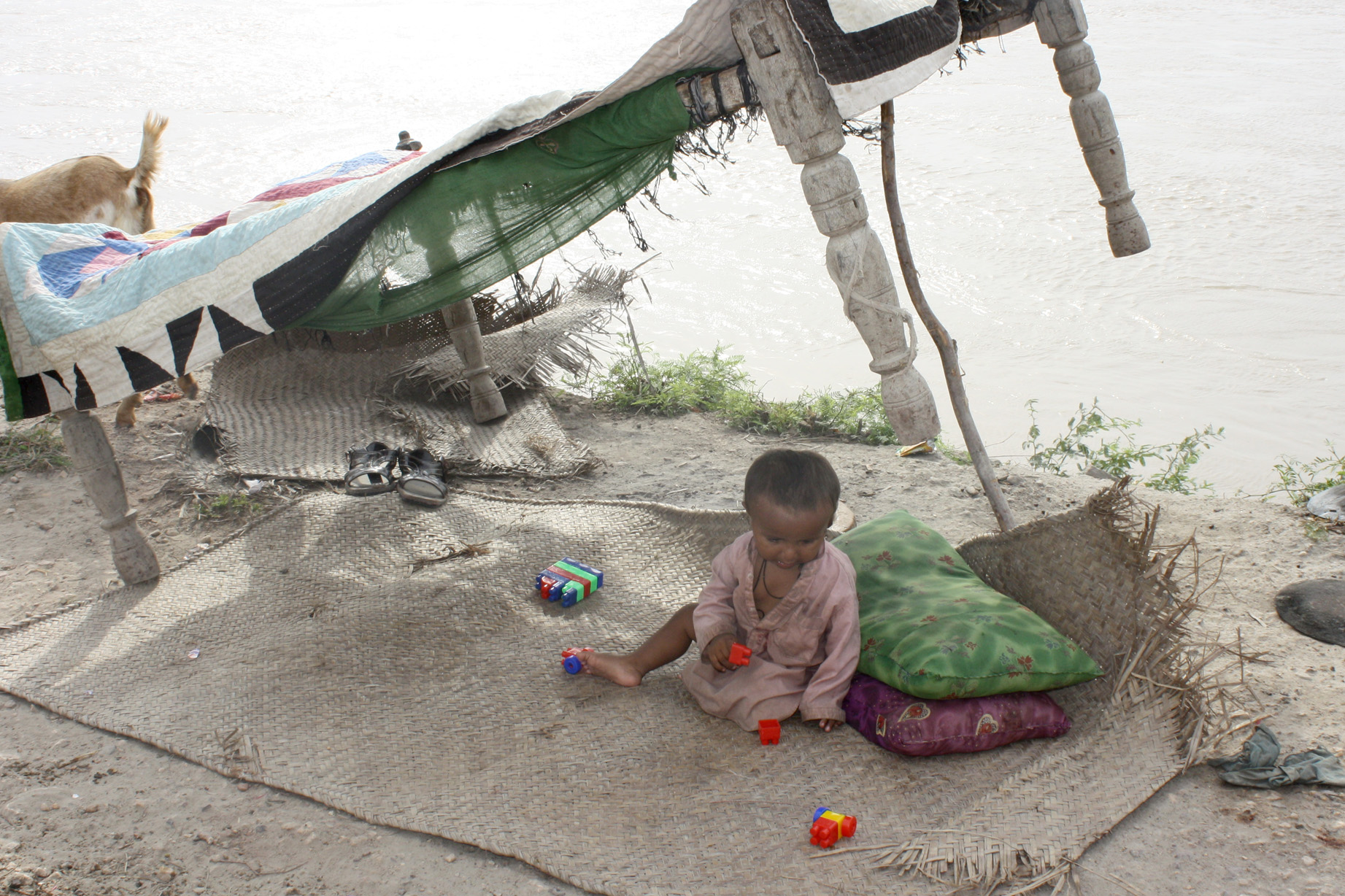 Make-shift shelter - families on an embankment along the river Indus in Sindh province