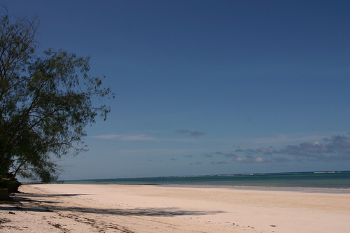 A beach in Diani, Kenya
