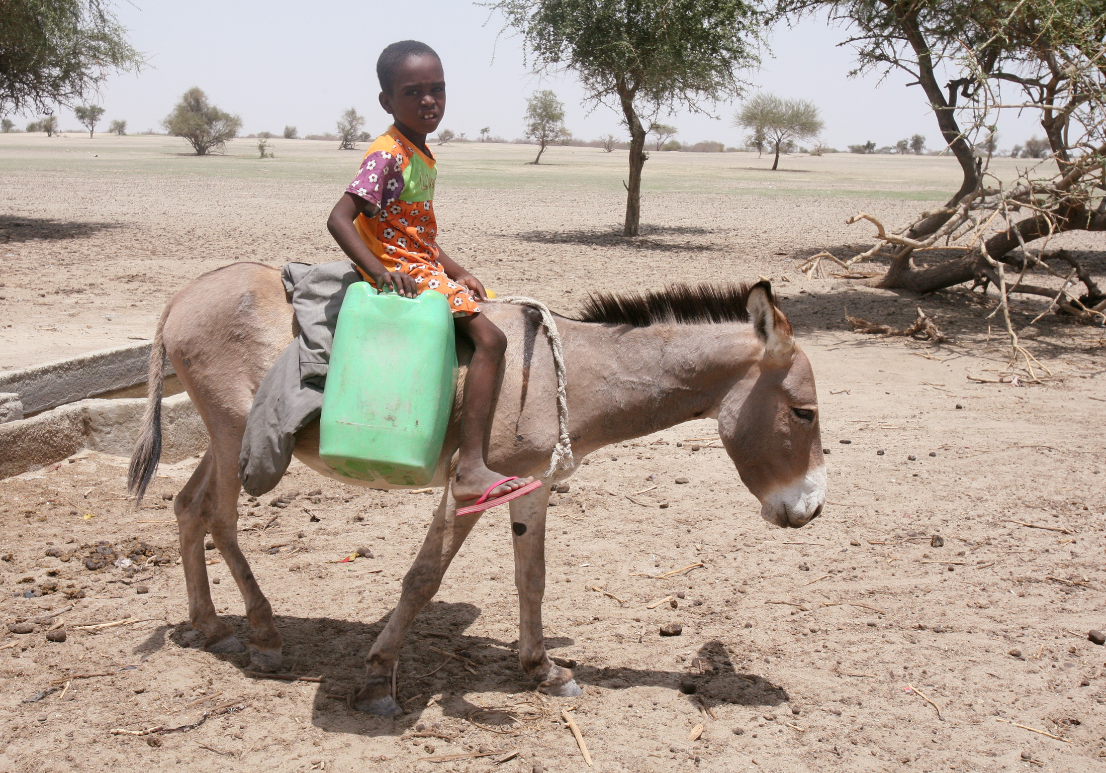 A young boy goes in search of water in the western Chad region of Bahr-el-Ghazal. Chad is mostly rural with access to water and infrastructure limited