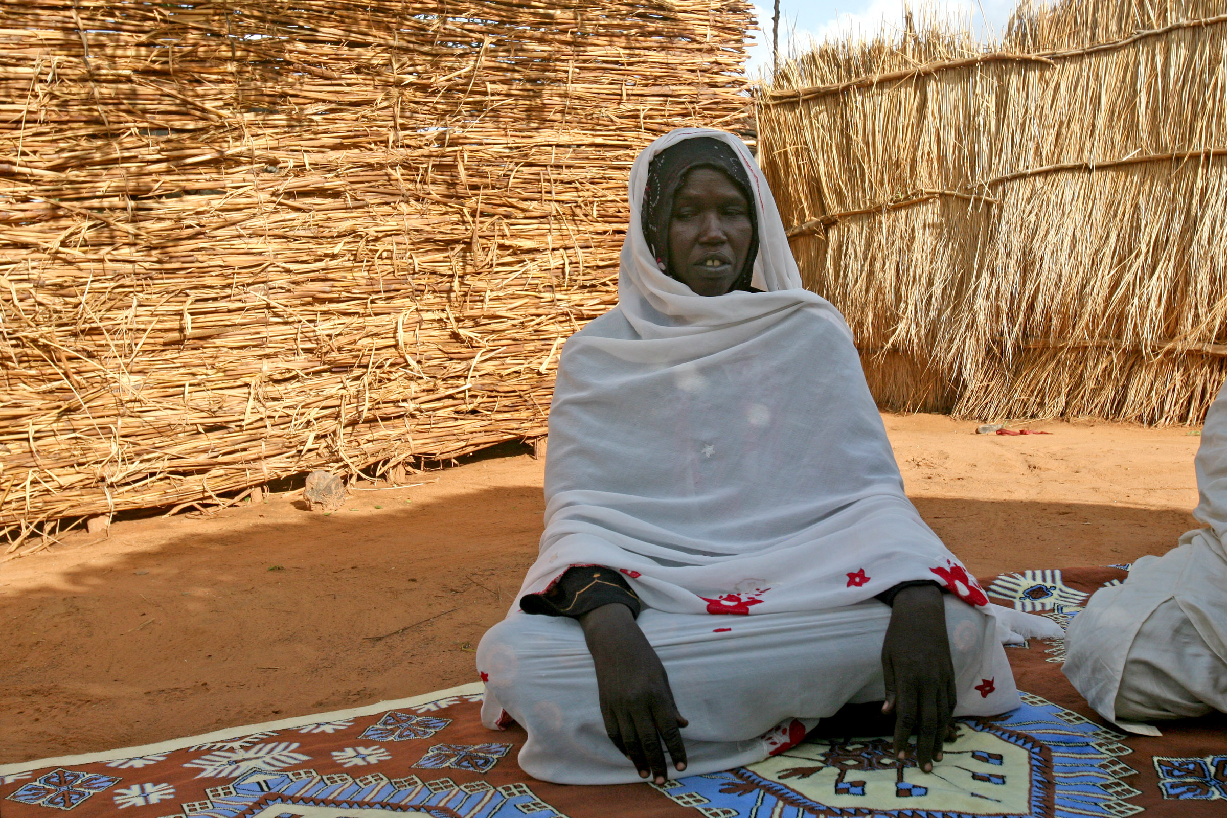 Some of the Sudanese refugees in eastern Chad have been there for close to a decade after fleeing violence in Darfur