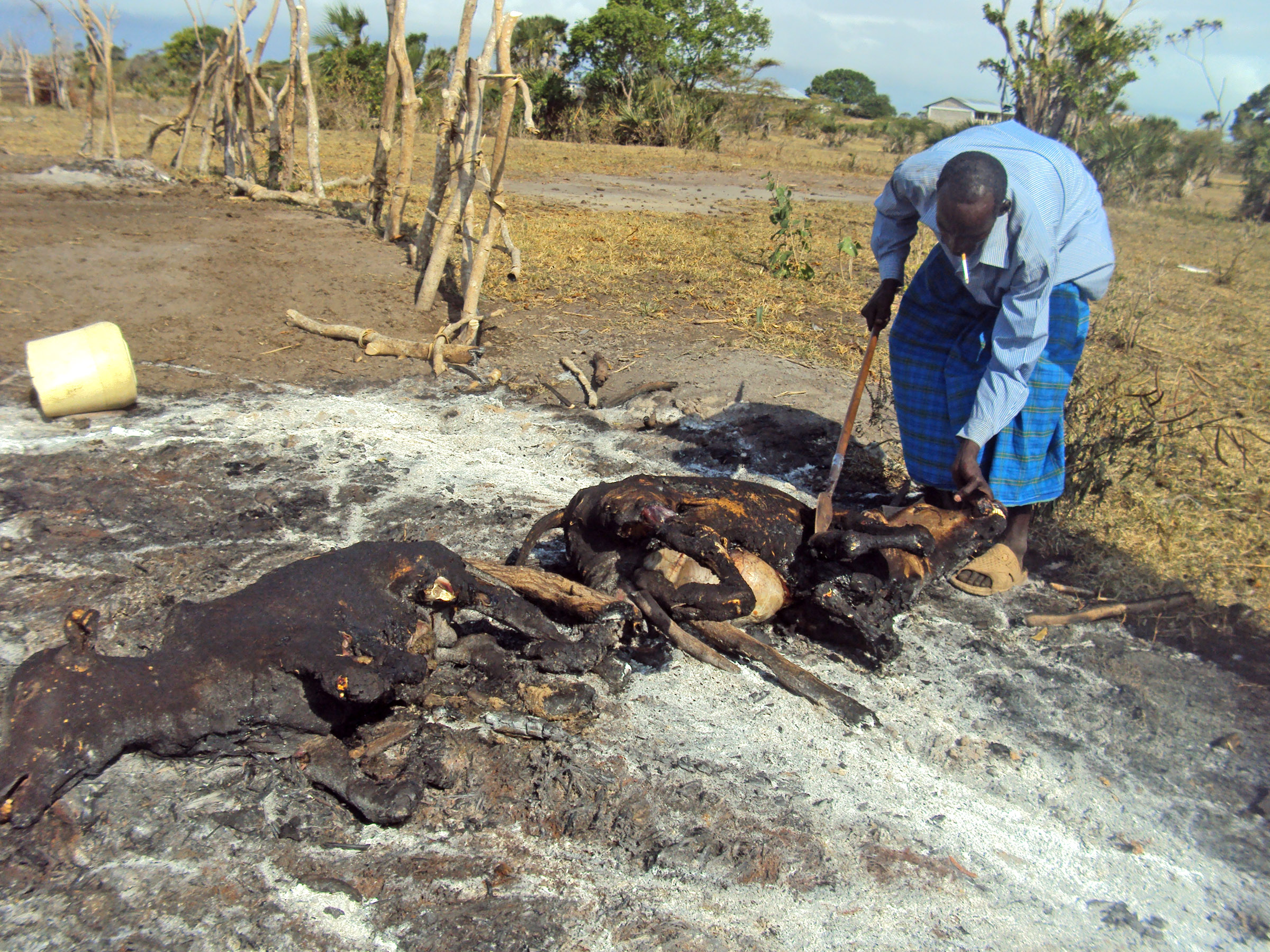 About a month of ethno-political violence in Coast Province's Tana River County has led to the deaths of over 100 people, the displacement of thousands others and the destruction of livelihoods