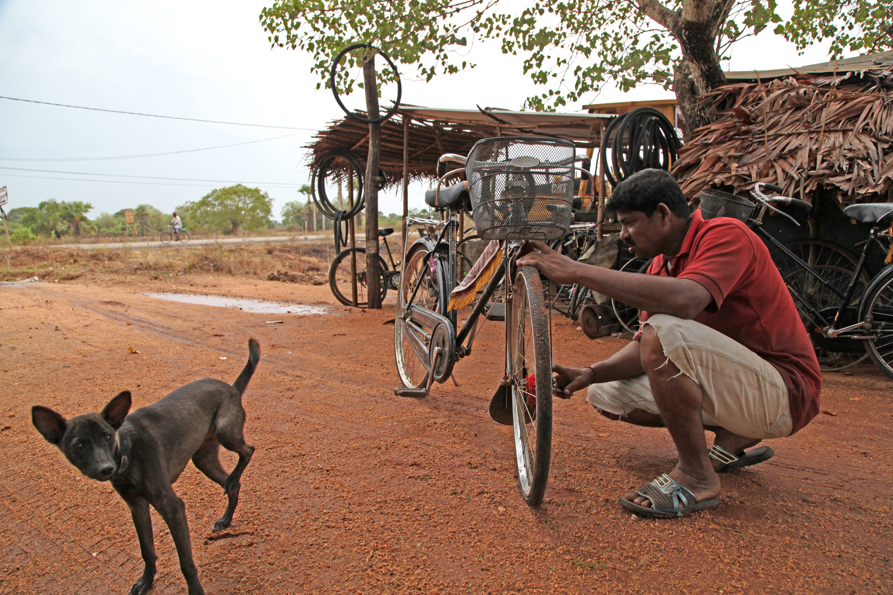 Bicycles are the most popular mode of transportation in the area and a young man earns a living by repairing them. He and his family live in the same shelter