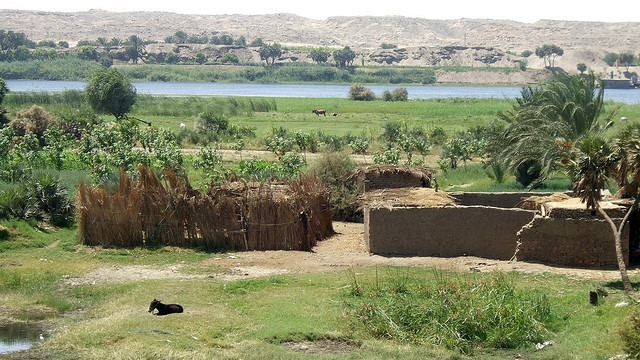 Farm by the Nile river in Idfo, Aswan, Egypt