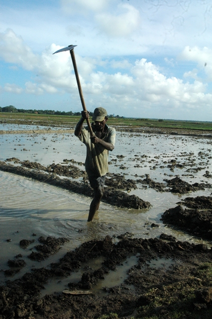 A farmer in the South Eastern Digamadulla District repairs a flood-damaged earth embankment