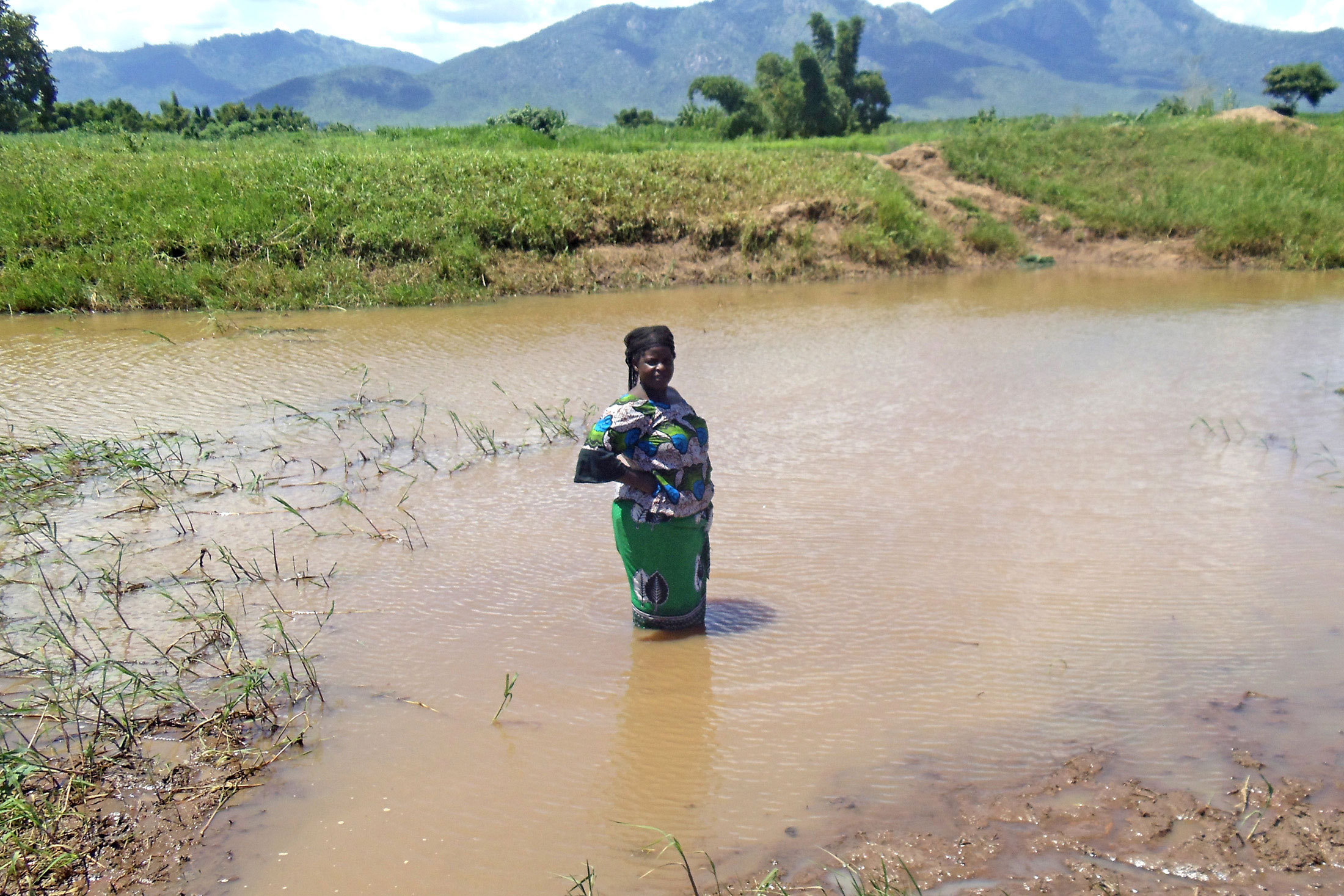 A woman wades through flood waters in southern Malawi's Mulanje District