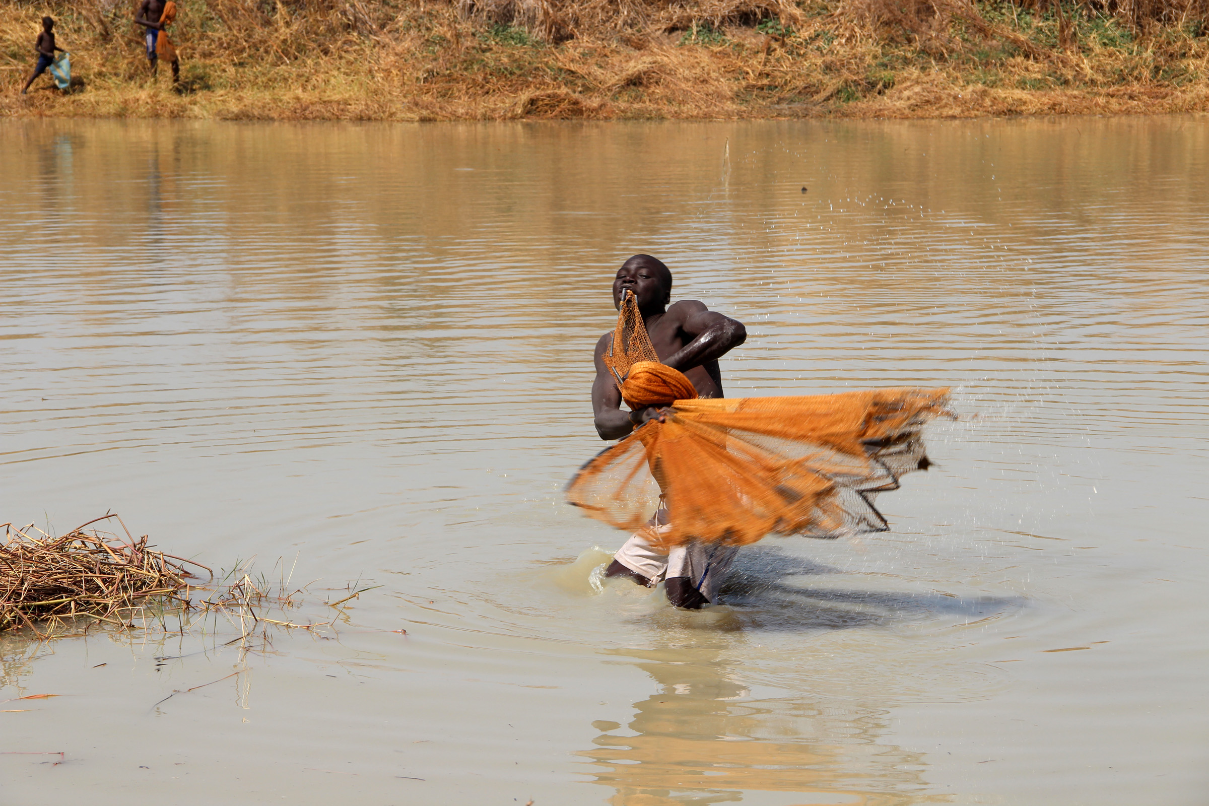 Large ponds after the floods are providing fish for some residents in Chad's southern Mayo Kebbi Est region