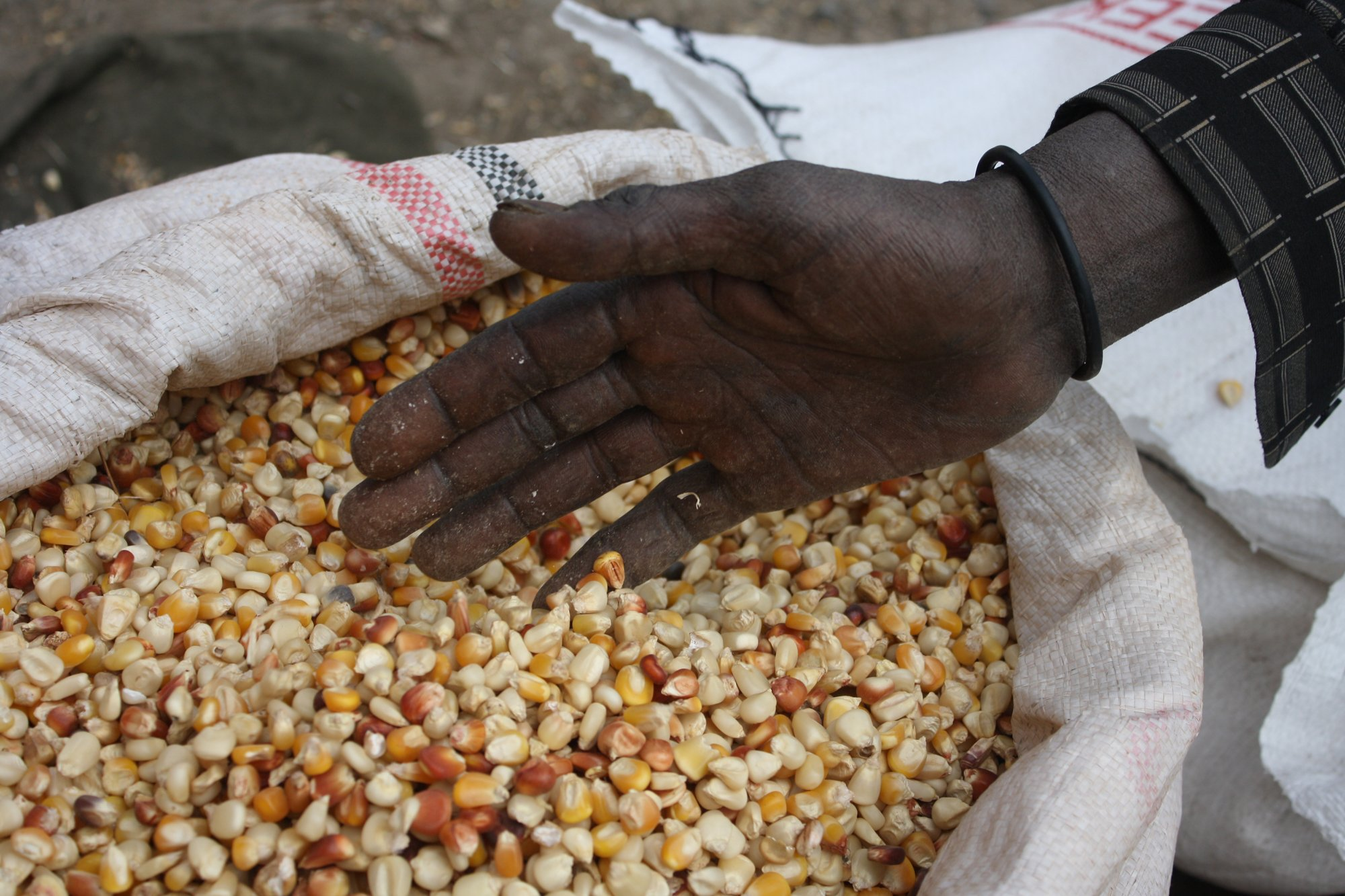 A seller runs his hand through his stock of maize at Ihil Berenda, the wholesale grain market in Addis Ababa, Ethiopia