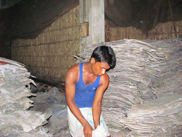 Workers in Bangladesh's multi-million dollar tannery business are not provided the protective equipment they need, resulting in a number of health issues; both respiratory and skin-related