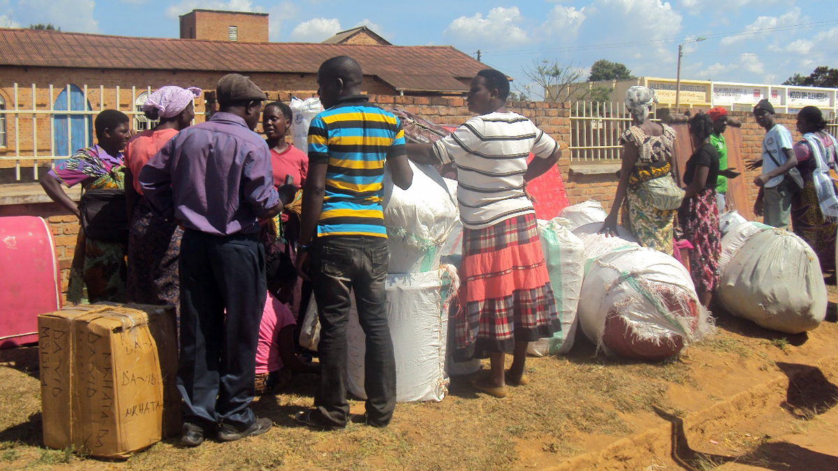 Hundreds of Malawians fleeing attacks in Tanzania are now stranded in the northern city of Mzuzu without funds to continue their journeys home