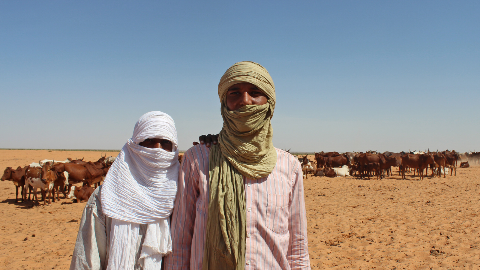 Young herders said it was too dangerous to access pasture in Mali. Young herders wait to give their animals water in Mbera refugee camp in eastern Mauritania.
