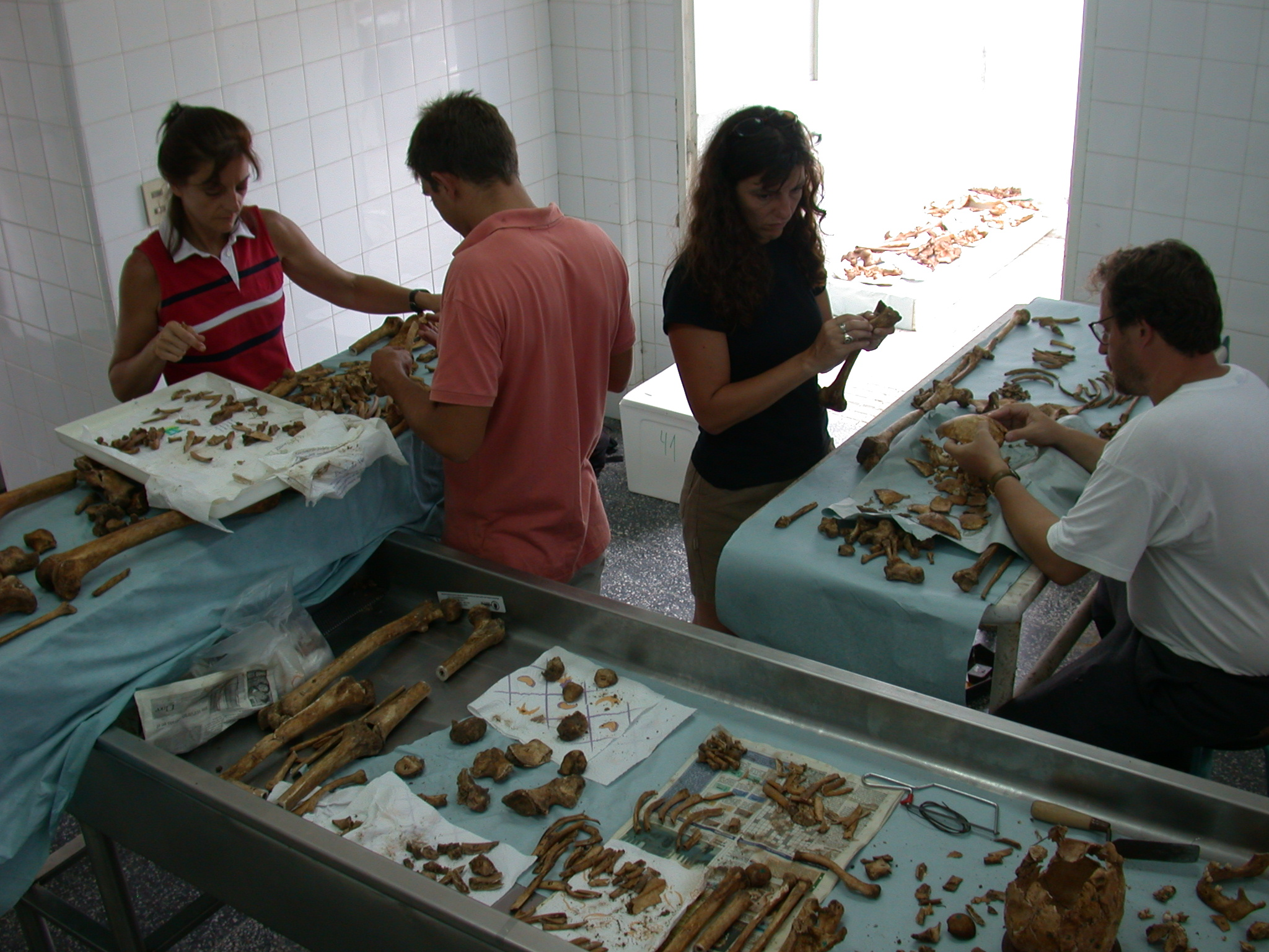 Inside the laboratory of the Argentine Forensic Anthropology Team