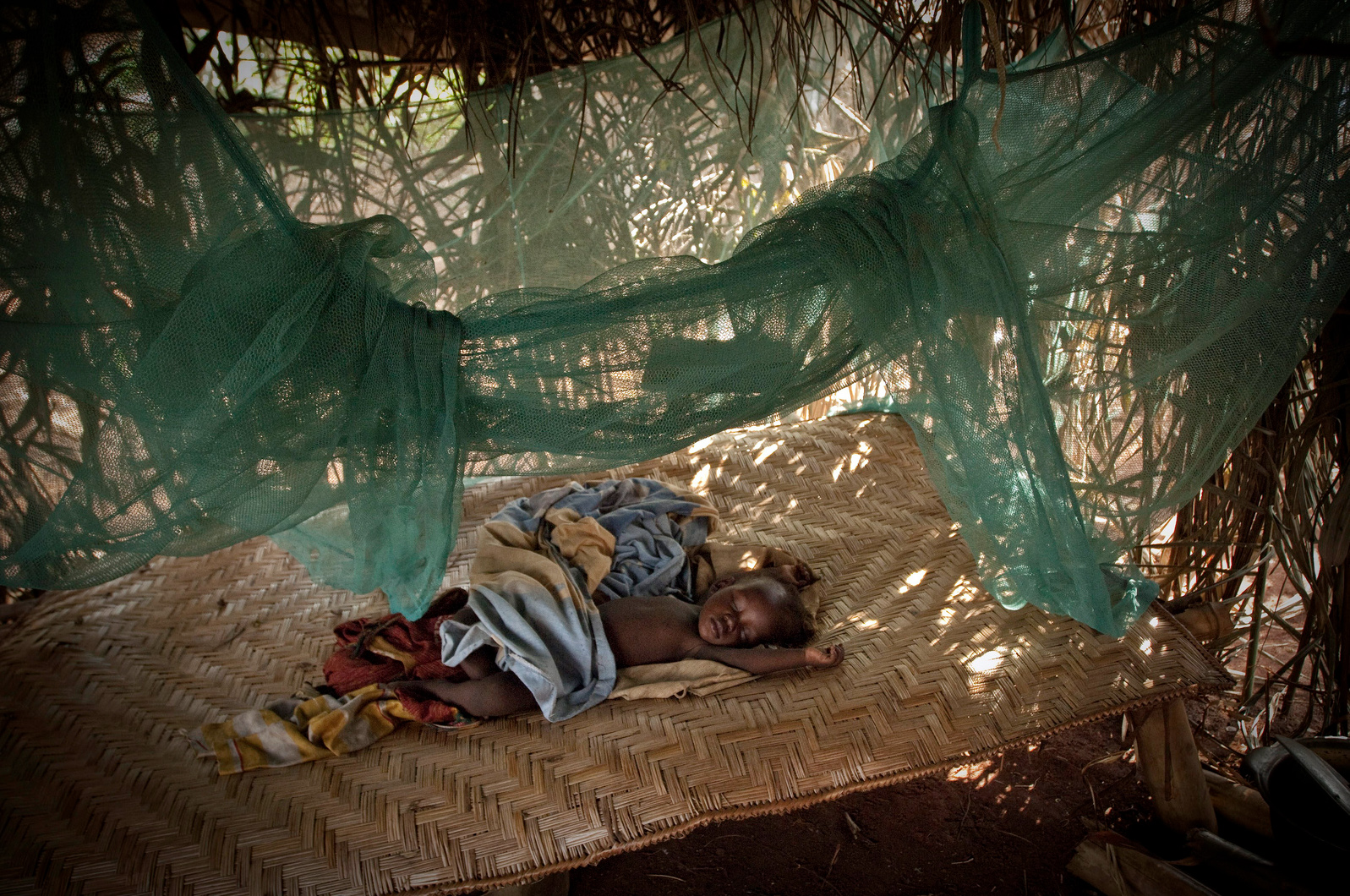 A baby sleeps protected by mosquito net