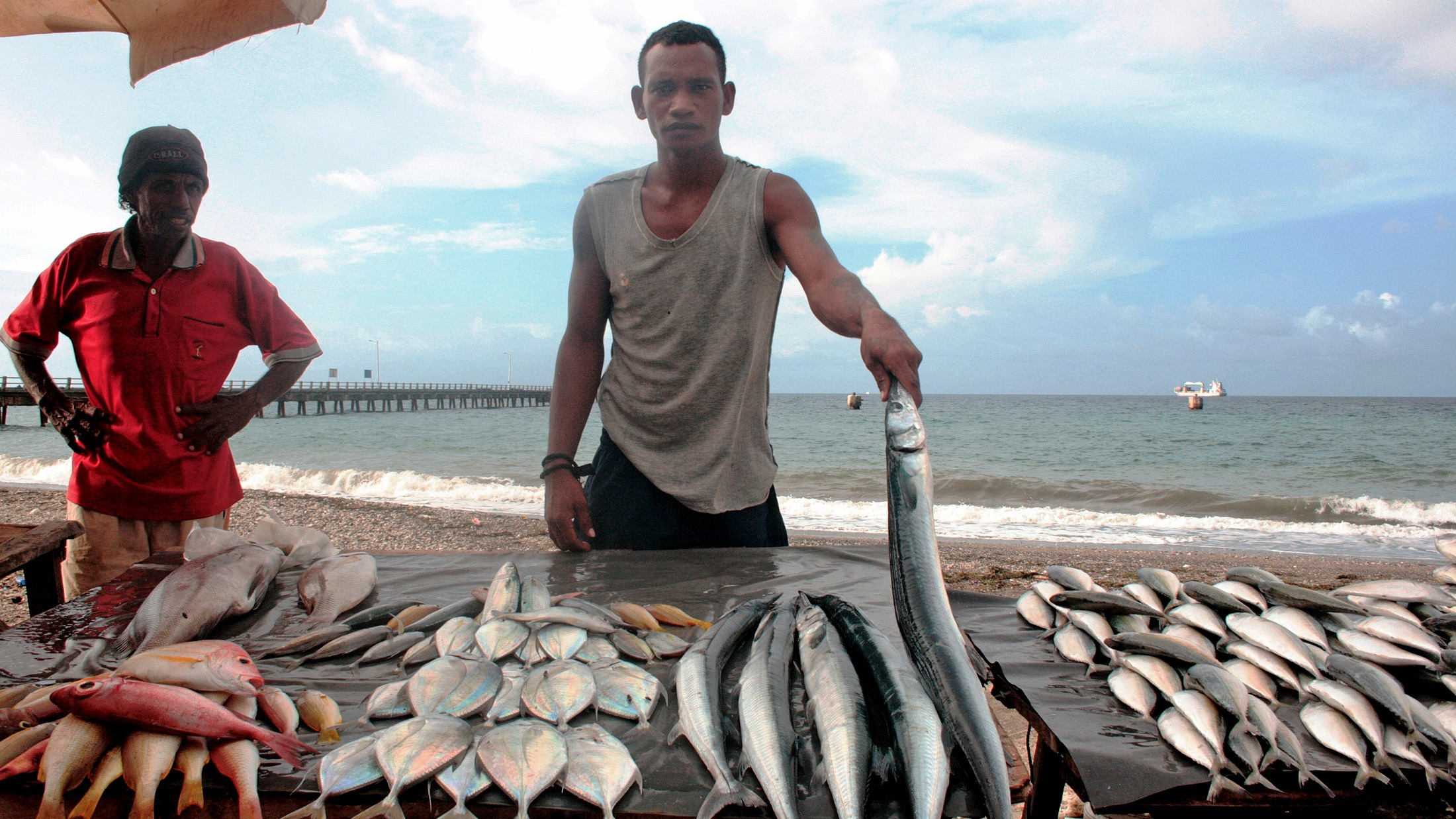 A Timorese fisherman displays his catch in the capital, Dili. Jobs are not easy to come by in contemporary Timor-Leste as the country's economy rests on oil revenues, which do not create employment for the mostly under-educated population.